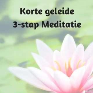 Meditation name: 3 stap Meditatie