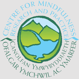Meditation name: Mindful Movement