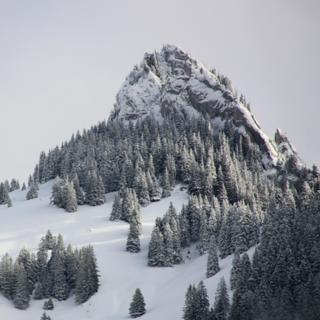 Meditation name: Meditación de la montaña