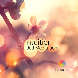 Meditation name: Intuition and Acceptance Meditation