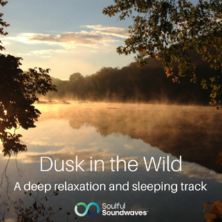 Meditation name: Dusk in the Wild - Relaxation & Sleep