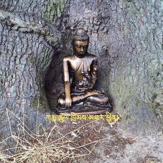 Meditation name: Traditional Om Mani Padme Hum