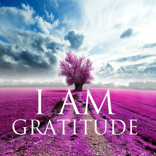 Meditation name: I AM Affirmations: Gratitude & Self Love
