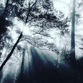 Meditation name: Creativity & Imagination Meditation