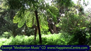 Meditation name: Gentle Piano with Birds in Nature