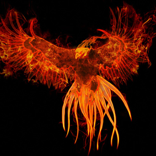 "Meditation name: Rising of the Phoenix ""Rebirth"""