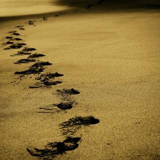 Meditation name: Un camino chamánico de transformación