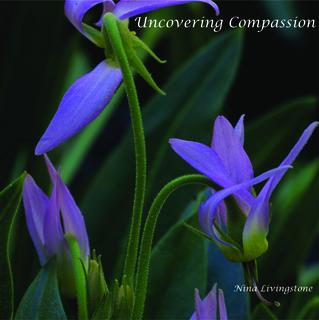 Meditation name: Compassion for Self Meditation