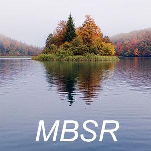 Meditation name: MBSR Lake Meditation