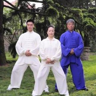 Meditation name: Zhi Neng Qigong Body and Mind (Long)