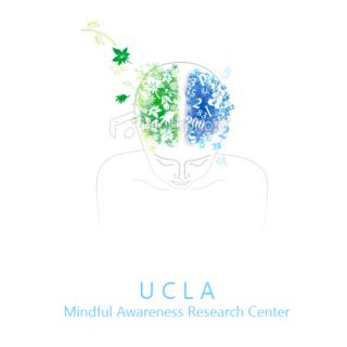 Meditation teacher: UCLA Mindful Awareness Research Center