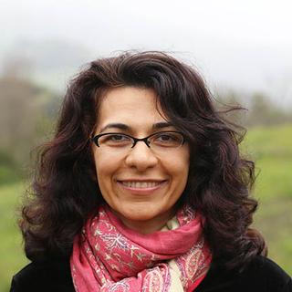Meditation teacher: Nikki Mirghafori, PhD