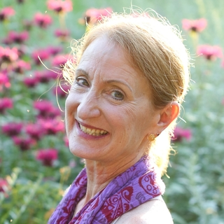 Meditation teacher: Carol Krucoff