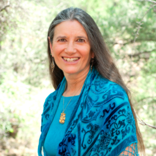 Meditation teacher: Sandra Ingerman