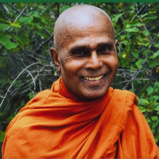 Meditation teacher: Bhante Henepola Gunaratana